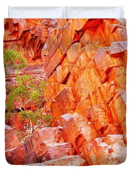 Colours Of Ormiston Gorge, Northern Territory Duvet Cover