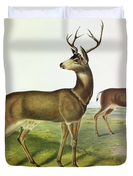 Columbian Black-tailed Deer Duvet Cover