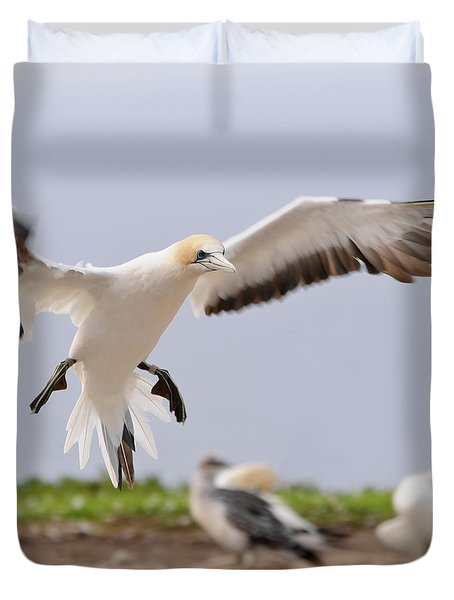 Coming In To Land Duvet Cover