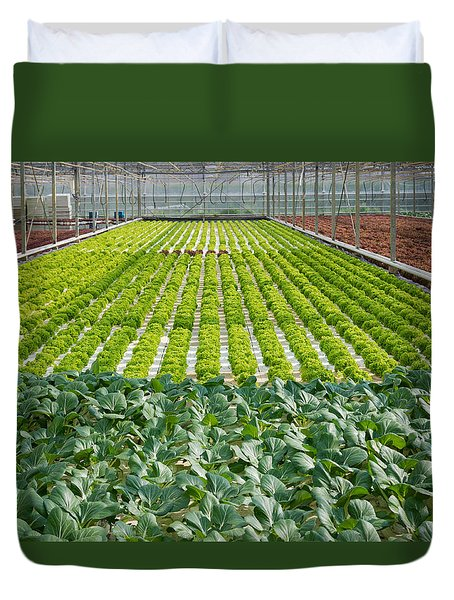 Duvet Cover featuring the photograph Commercial Greenhouse Interior by Hans Engbers