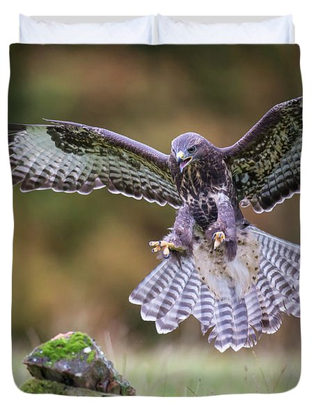Common Buzzard In Flight Duvet Cover