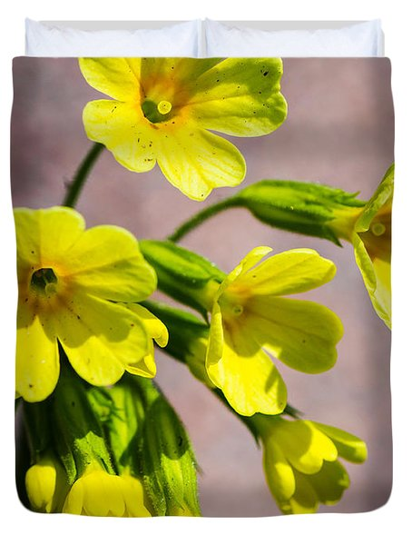 Common Cowslip In The Morning Sunlight Duvet Cover