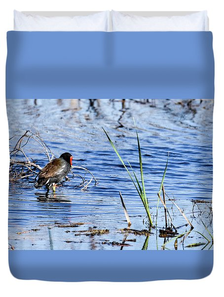 Duvet Cover featuring the photograph Common Gallinule by Gary Wightman