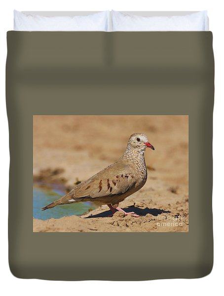 Duvet Cover featuring the photograph Common Ground-dove by Myrna Bradshaw