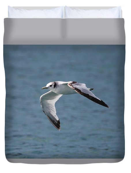 Common Gull Duvet Cover