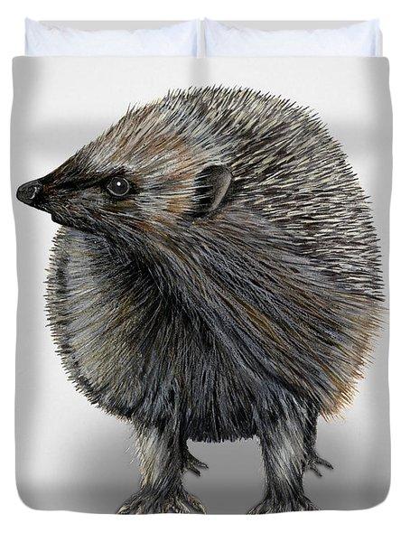 Duvet Cover featuring the painting Common Hedgehog  Erinaceus Europaeus - Herisson D Europe - Erizo by Urft Valley Art