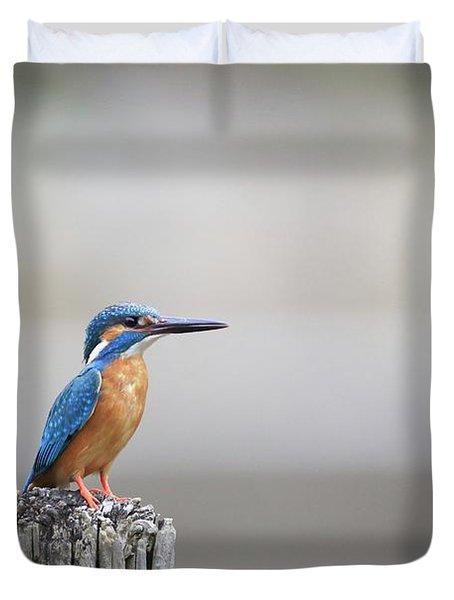 Common Kingfisher 3 Duvet Cover