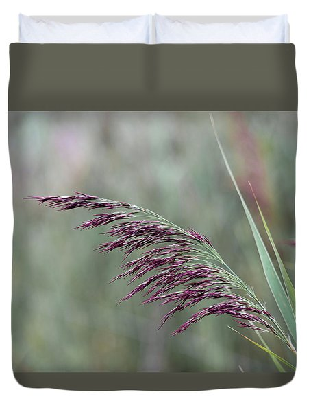 Duvet Cover featuring the photograph Common Reed Flower Stalk by Scott Lyons