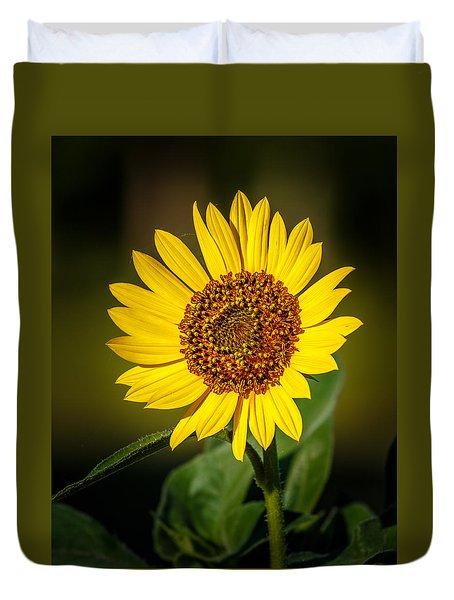 Common Sunflower Duvet Cover by Doug Long