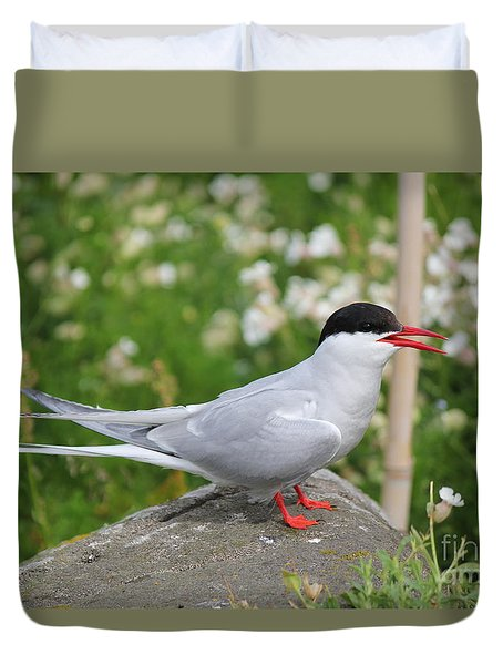 Common Tern Duvet Cover
