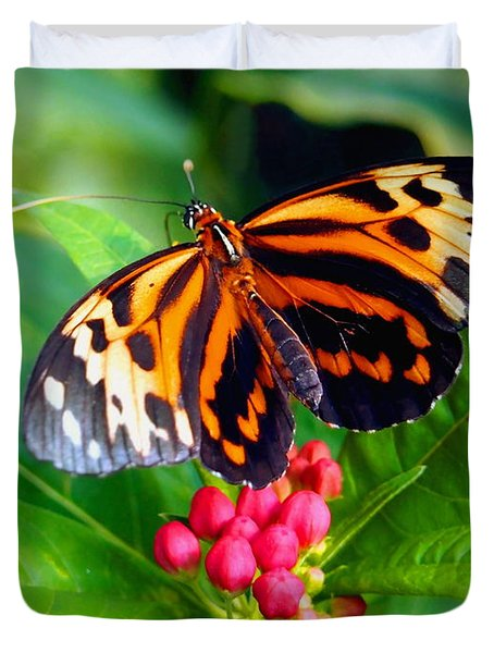 Common Tiger Glassywing Butterfly Duvet Cover