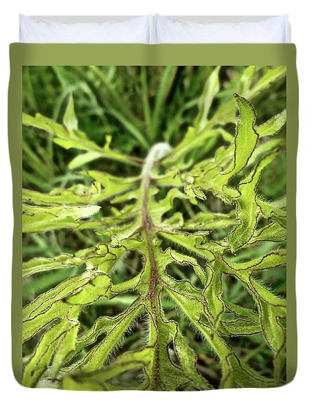 Compass Plant Duvet Cover