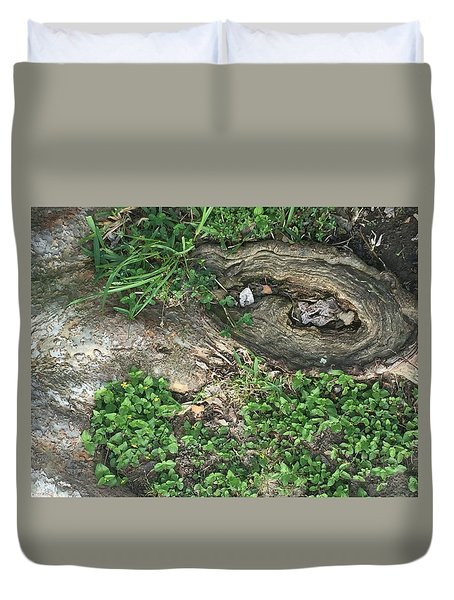 Composition In Trees Duvet Cover