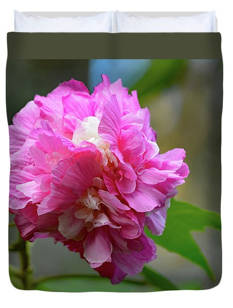 Confederate Rose Duvet Cover by Jimmie Bartlett