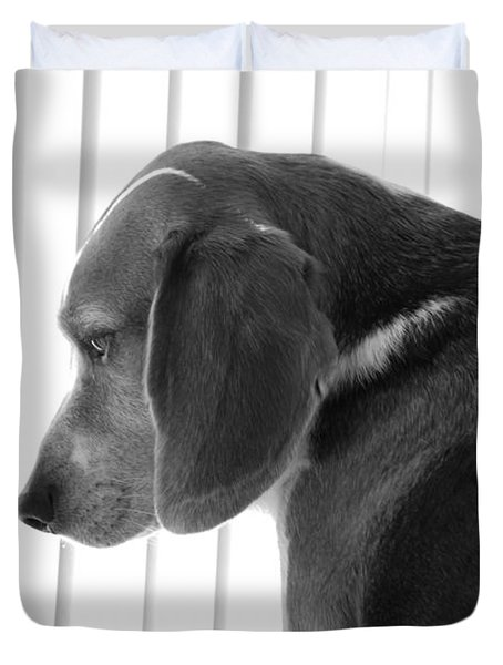 Contemplative Beagle Duvet Cover
