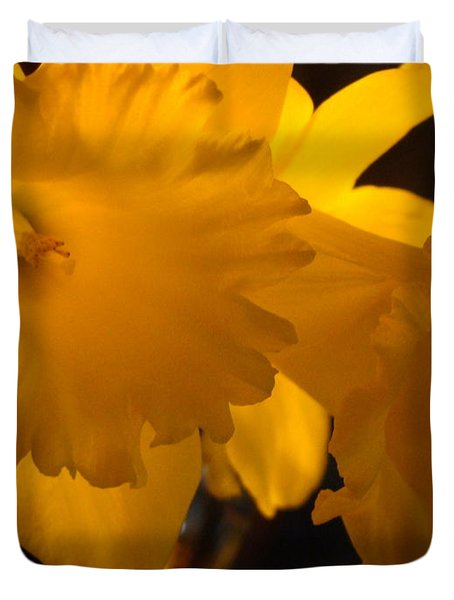 Contemporary Flower Artwork 10 Daffodil Flowers Evening Glow Duvet Cover by Baslee Troutman