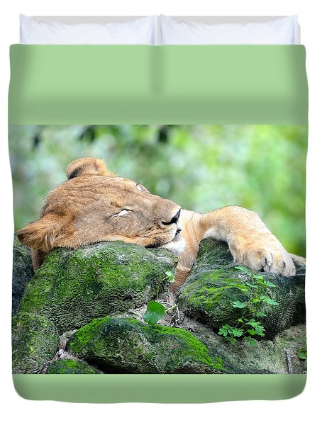 Contented Sleeping Lion Duvet Cover