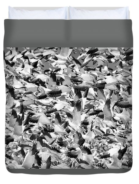 Duvet Cover featuring the photograph Controlled Chaos Bw by Everet Regal