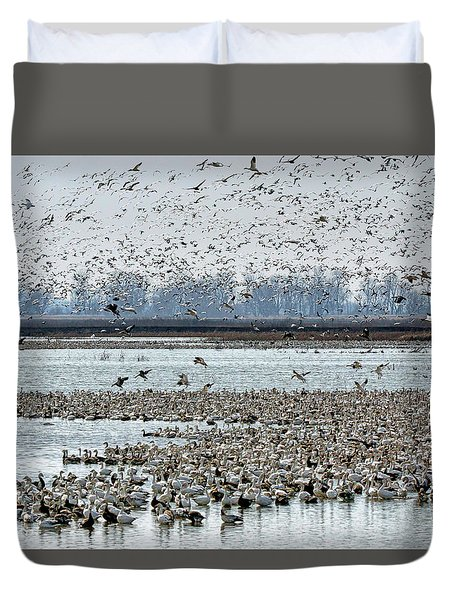 Duvet Cover featuring the photograph Controlled Chaos - Snow Geese by Nikolyn McDonald