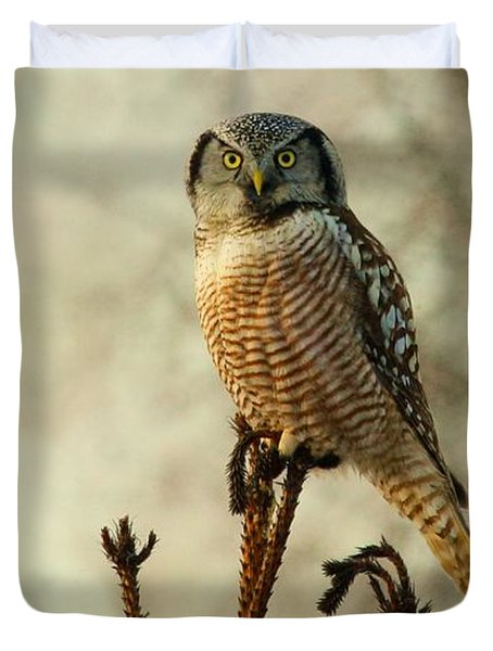 Convenient Perch Duvet Cover