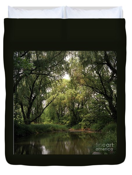 Cook County Forest Preserve No 6 Duvet Cover by Kathy McClure