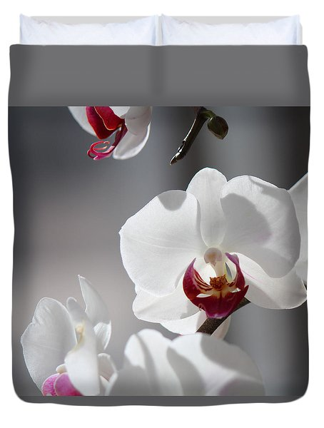 Duvet Cover featuring the photograph Cool Classiness by Silke Brubaker