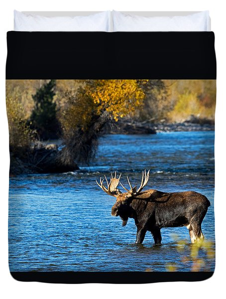 Cool Moose Duvet Cover