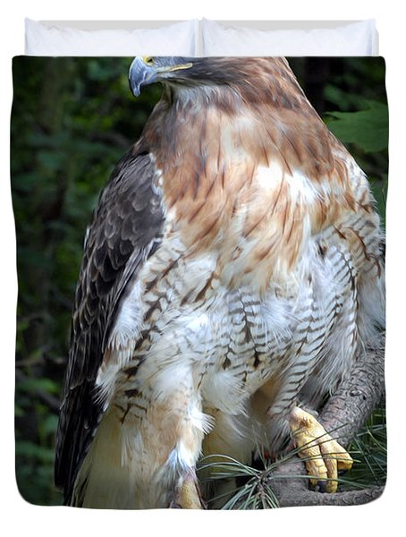 Coopers Hawk Duvet Cover