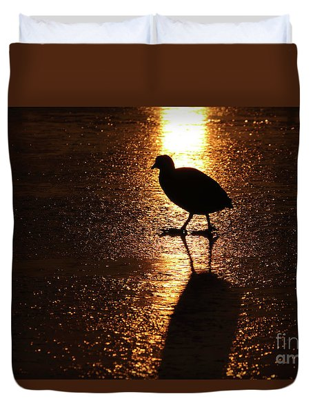 Coot Walks On Golden Ice  Duvet Cover