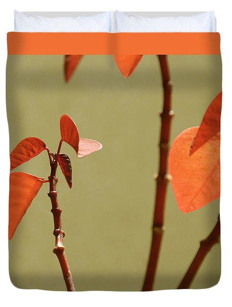 Duvet Cover featuring the photograph Copper Plant 2 by Ben and Raisa Gertsberg