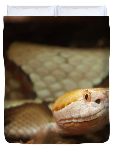 Duvet Cover featuring the digital art Copperhead by Chris Flees