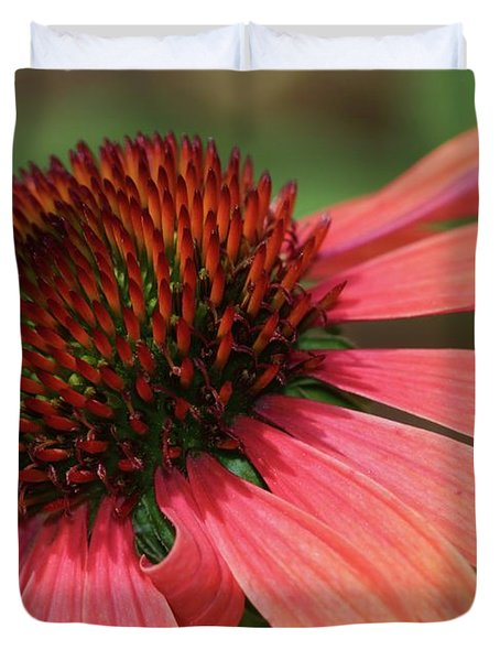 Coral Cone Flower Duvet Cover by Sabrina L Ryan