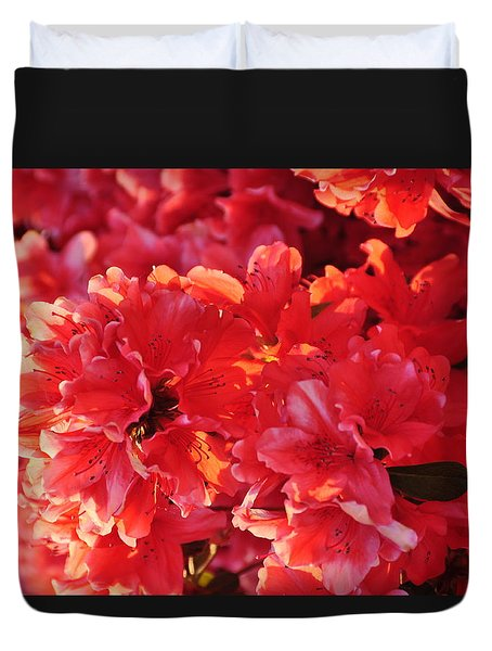 Coral Pink Azaleas Duvet Cover by Jan Amiss Photography