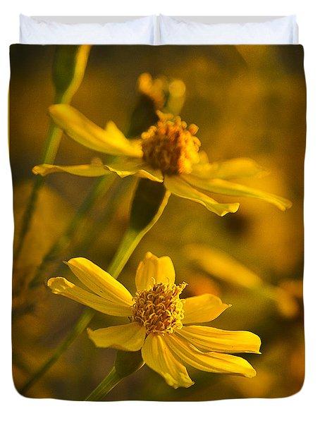 Coreopsis Verticillata 3 Duvet Cover