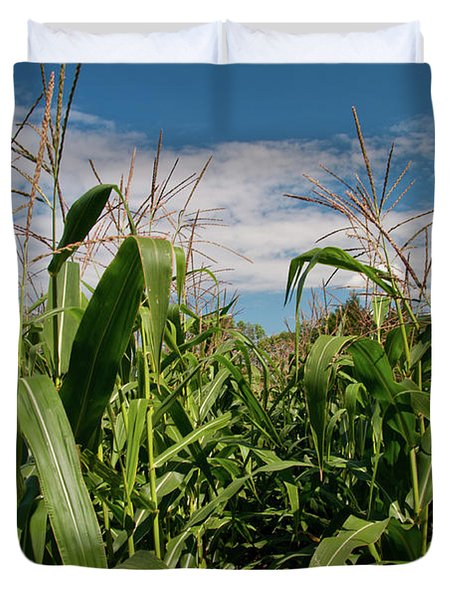 Duvet Cover featuring the photograph Corn 2287 by Guy Whiteley