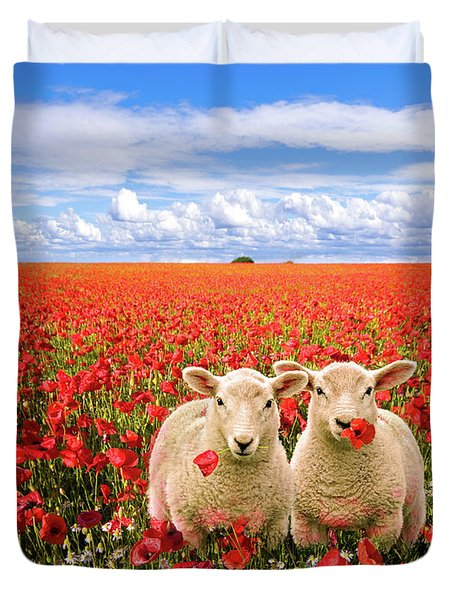 Corn Poppies And Twin Lambs Duvet Cover by Meirion Matthias