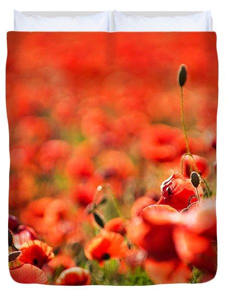 Corn Poppies Duvet Cover by Meirion Matthias
