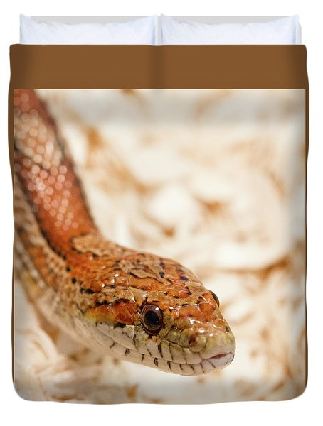 Duvet Cover featuring the photograph Corn Snake by Jean Noren