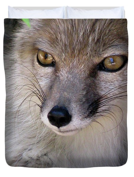 Duvet Cover featuring the photograph Corsac Fox- Vulpes Corsac 03 by Ausra Huntington nee Paulauskaite