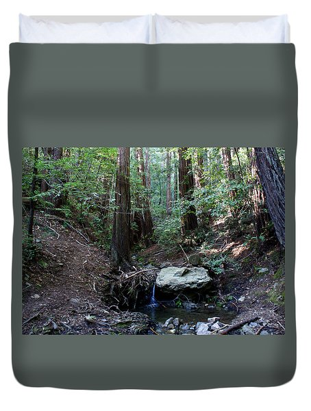 Corte Madera Creek Duvet Cover by Ben Upham III