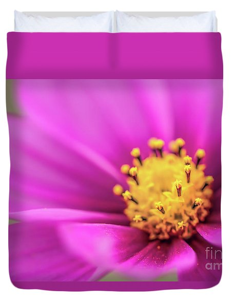 Duvet Cover featuring the photograph Cosmos Pink Sensation by Sharon Mau