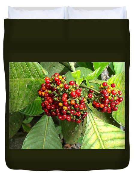 Duvet Cover featuring the painting Costa Rican Berries by Angela Annas
