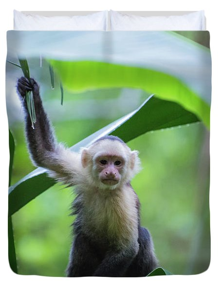 Costa Rica Monkeys 1 Duvet Cover
