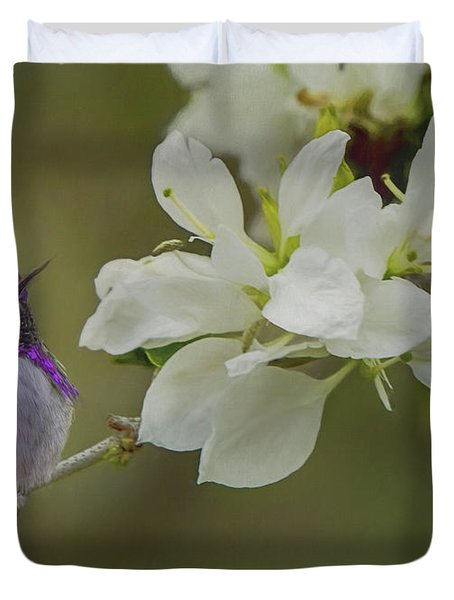 Costas Hummingbird On An Anacacho Orchid Branch Duvet Cover