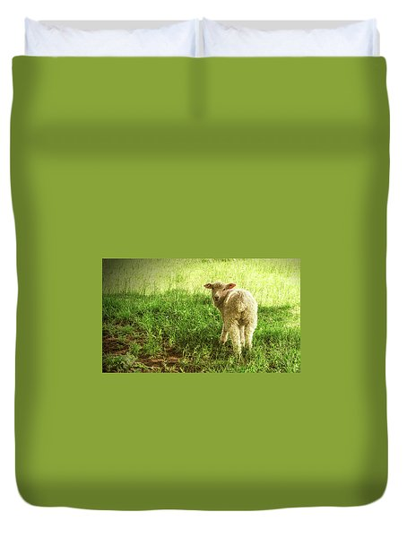 Cotswold Sheep Duvet Cover