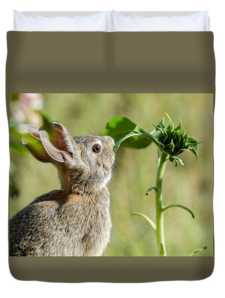 Cottontail Rabbit Eating A Sunflower Leaf Duvet Cover