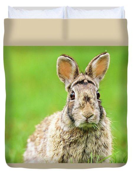 Cottontail Rabbit Duvet Cover