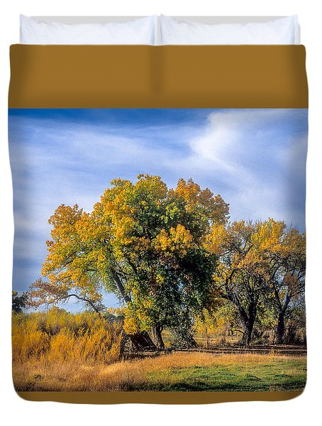 Cottonwood #1 Tree On Ranch Land In Colorado Fall Colors Duvet Cover