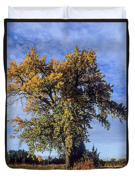 Cottonwood #3 Colorado Ranch Country In Fall Duvet Cover