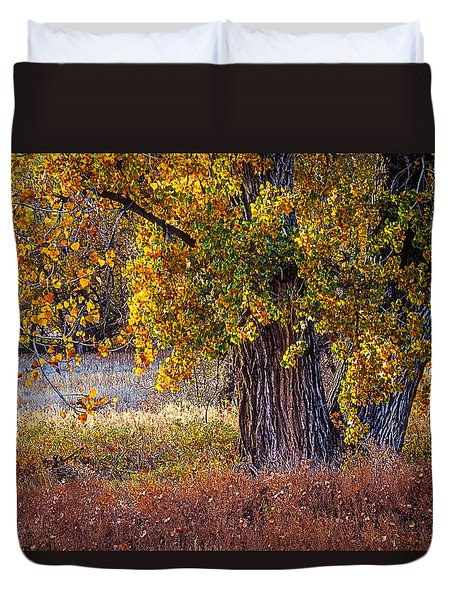 Cottonwood #6 Fountain Creek, Colorado In Fall Duvet Cover